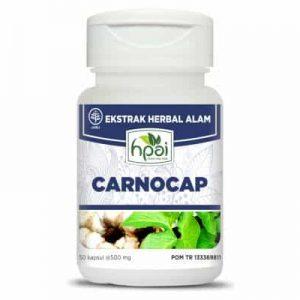 CARNOCAP untuk kanker