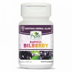 obat herbal BILLBERRY