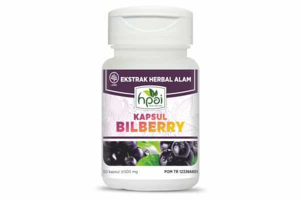 obat herbal BILLBERRY